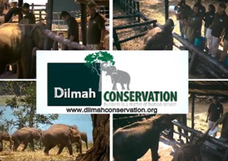 Dilmah – Protect the Environment